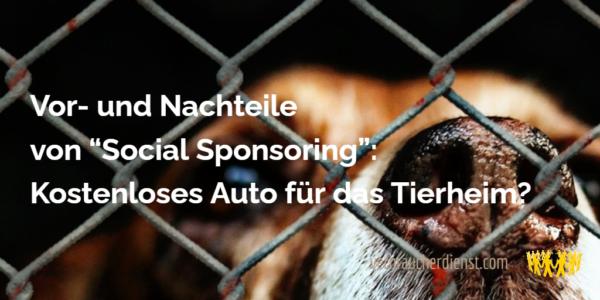 """TItel: Vor- und Nachteile von """"Social Sponsoring"""": Kostenloses Auto für das Tierheim?"""